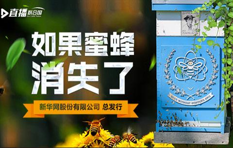 直播聯合國丨如果蜜蜂消失了