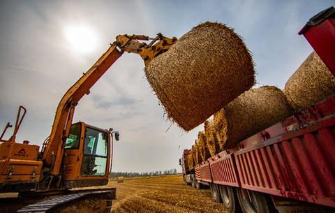 """小麥收割、秸稈回收""""一條龍"""""""