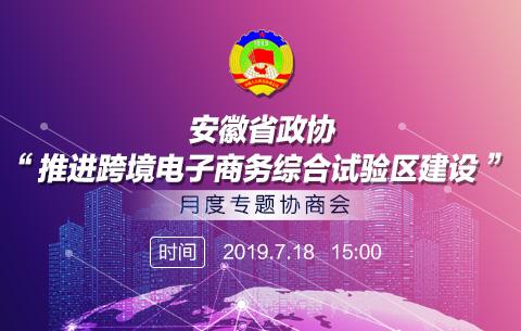 """""""推進跨境電子商務綜合試驗區建設""""月度專題協商會"""