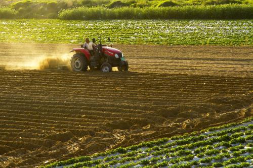 安徽省耕地質量持續三年穩中有升