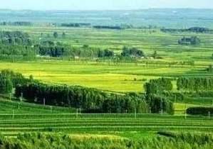 """提質增效, 打造現代農業""""航母"""""""