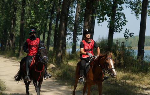 中國碭山國際馬術耐力賽開賽