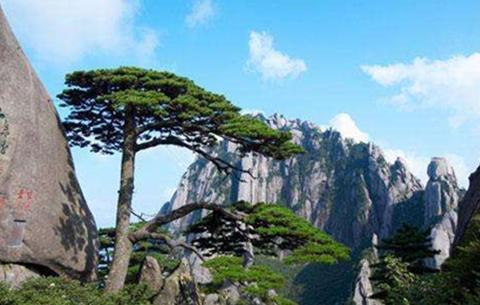 黃山等地入選中國十大最美景觀