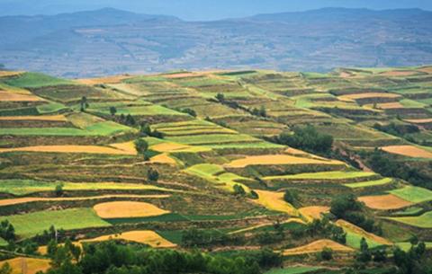 安徽省計劃秋種面積超5630萬畝