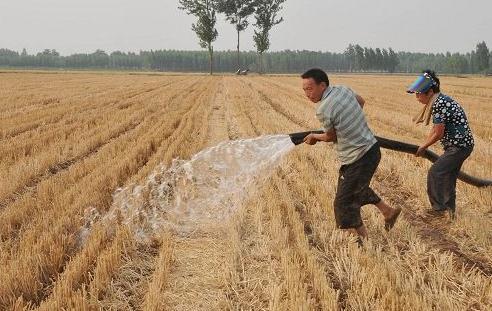 省防指發布緊急通知 組織開展抗旱保供水抗災奪豐收