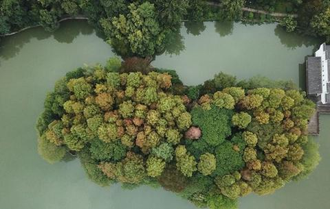 合肥:環城公園秋色美