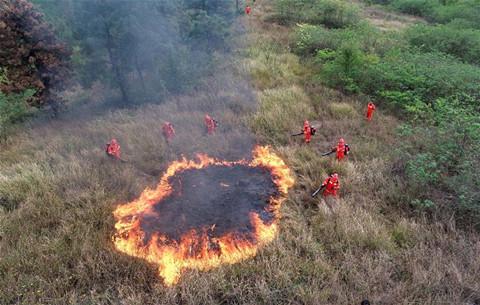 安徽肥西:森林防火應急演練