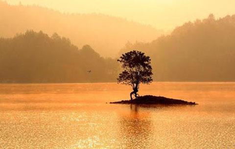 前九月地表水環境質量排名公布 黃山池州銅陵位列前三