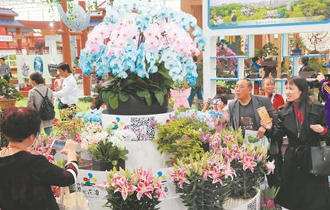 2019中國·合肥苗木花卉交易大會成果豐碩