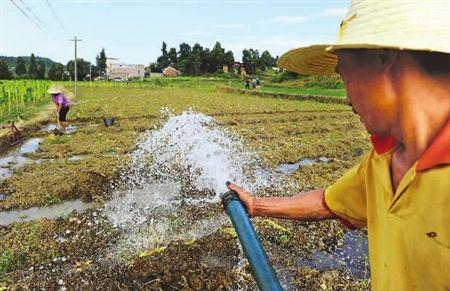 安徽省各地迅速行動抗旱保豐收