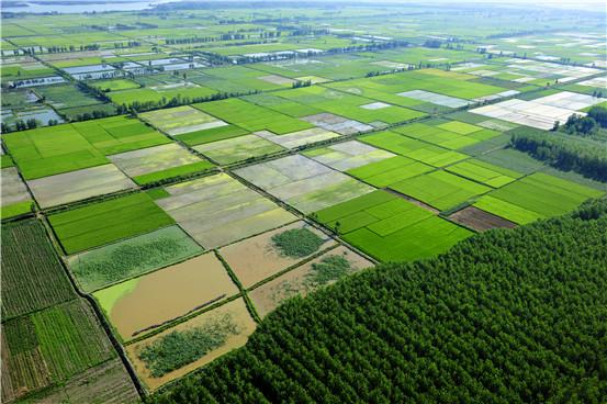 安徽省加強高標準農田建設質量管理
