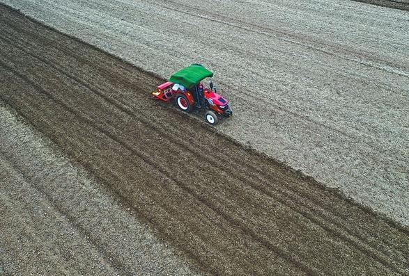 安徽主産區小麥播種基本結束