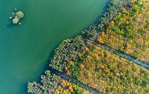 航拍:生態濕地 秋色旖旎