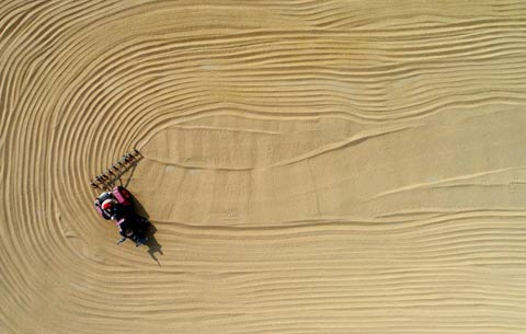 航拍:晴曬稻谷 豐收如畫