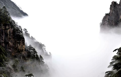 美呆了!黃山迎來今冬首場霧凇景觀