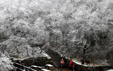 黃山風景區迎來今冬首場降雪