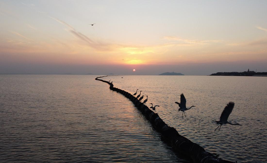 落日余暉映巢(chao)湖
