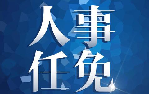 合肥市人民政府發布最新人事任免(名單)