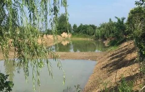 有害垃圾回收 第三方保潔托管——安徽亳州探索農村人居環境整治之路