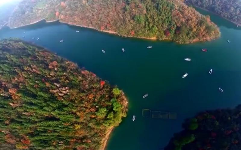 飛閱美麗皖江:水清岸綠産業優