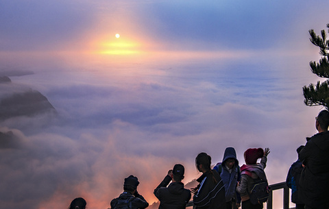 黃山:雲海翻騰映霞光