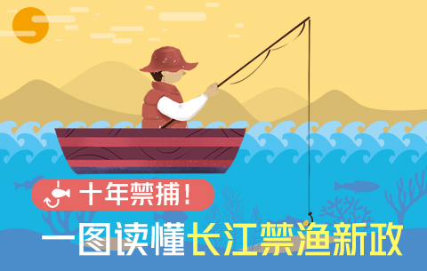 十年禁捕!一圖讀懂長江禁漁新政