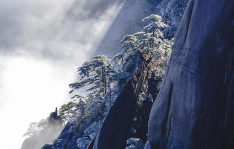 冬日黃山雪 瓊樹競嬌嬈