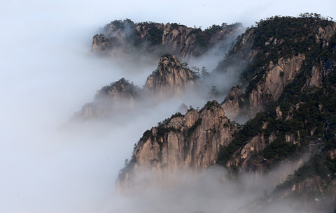 雲深山海遠 水墨入卷來