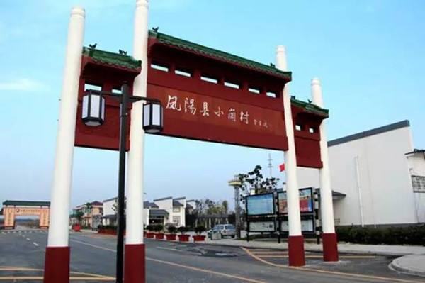 小崗村:開展環境治理 倡導文明新風