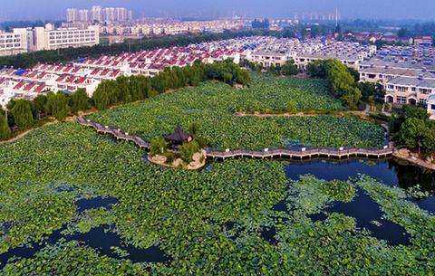 """滁州(zhou)市(shi)南譙區︰按下全域旅游示範區創建""""快進鍵"""""""