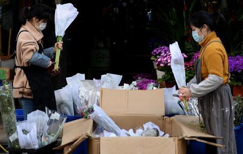 合肥:花卉市場開市忙