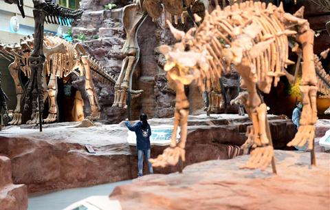 安徽(hui)省地質博物館恢復開放