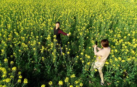 航拍:春花爛漫時 她在叢中笑