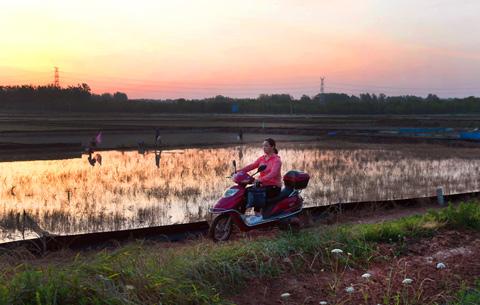 圖片故事:韓慶玲的九年扶貧路