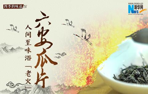 """六安瓜片︰人間至(zhi)味浴""""老火"""""""