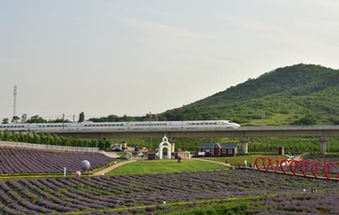 商合杭高鐵合湖段開通