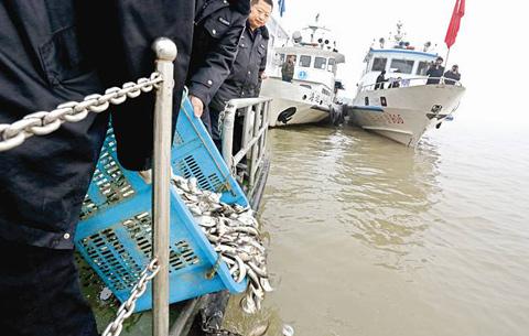 安徽省強化長江流域非法捕撈 漁獲物網絡交易監管
