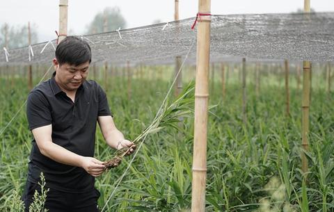 安徽銅陵:積極開展生産自救