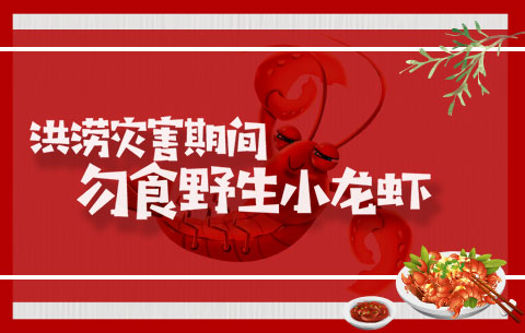 洪澇災害期間,勿食野生小龍蝦!