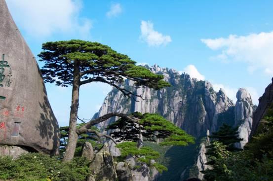 坐山觀海看世界 黃山多景點連線大直播
