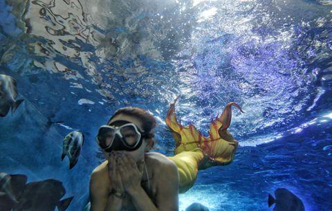 """圖片故事:做一條遊來遊去的""""美人魚"""""""
