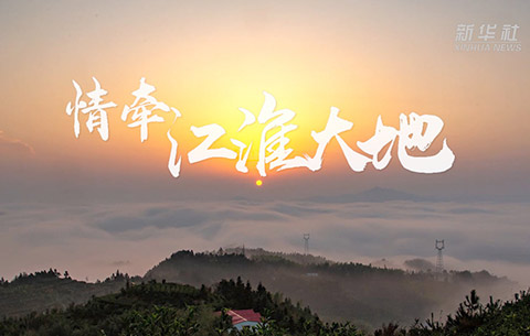 微視頻|情牽江淮大地