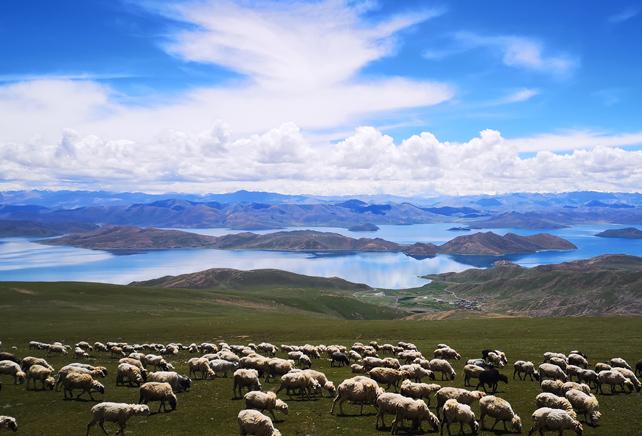 發力旅遊援藏,打出'組合拳', 讓旅遊火起來,群眾富起來。