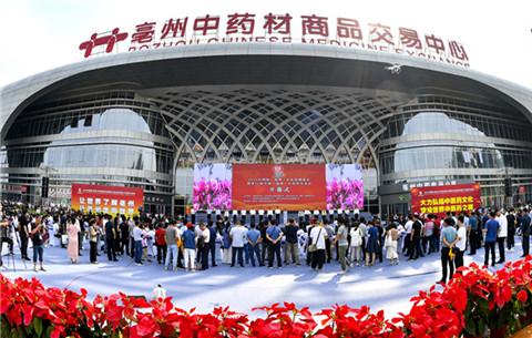 2020年國際(亳州)中醫藥博覽會開幕