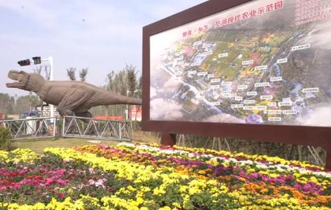 中國社會科學院哲學所來安徽蒙城開展專項課題調研