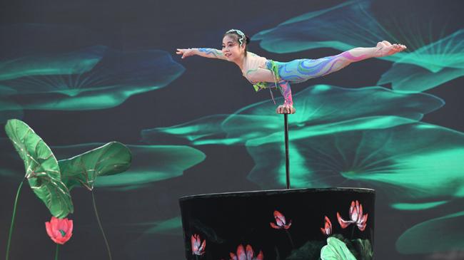 第五屆安徽省民間雜技藝術節在臨泉開幕