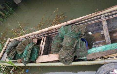 安徽警方破獲長江流域非法捕撈案 查獲各類江魚2000余尾