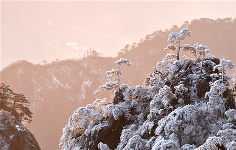 安徽黃山:銀裝素裹 雪國風光