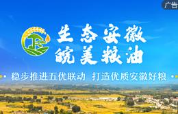 生態安徽 皖美糧油