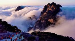 雲上觀海不看岳